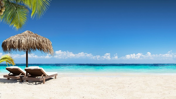 Five things undergraduates should do during vacations