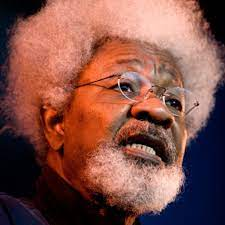 Mathematics saved me from insanity during 27-month detention – Soyinka