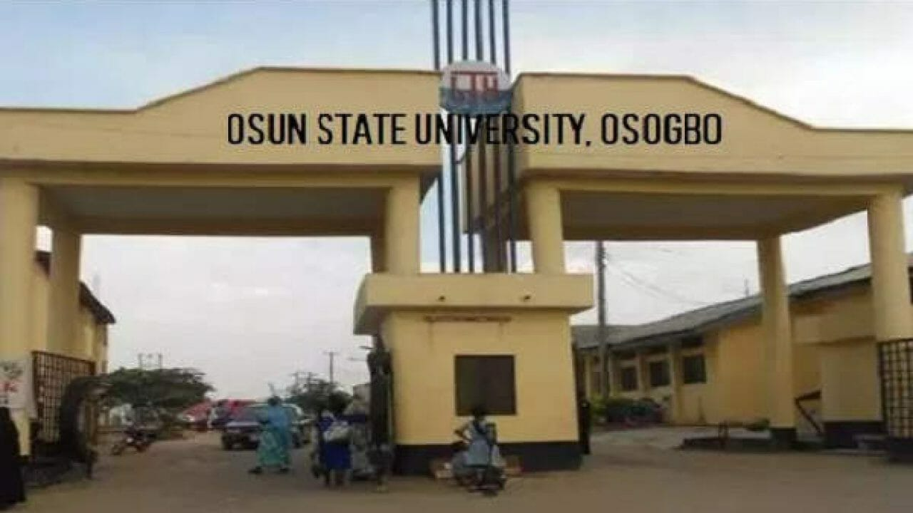 Family panics as a 300-level scholar goes missing in Osun